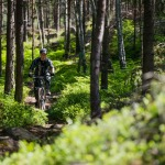 Mountain biking tour through forest Stockholm