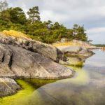 Kayaking Stockholm-10