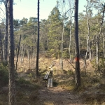 hiking tour in stockholm