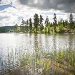 Swedish nature experience