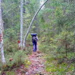 hiking trail high coast sweden