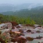 sweden hiking