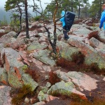 rocky area sweden